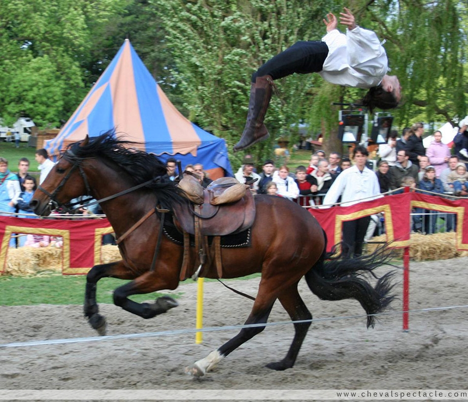 Salto arri re depuis un cheval au galop - Comment dessiner un cheval au galop ...